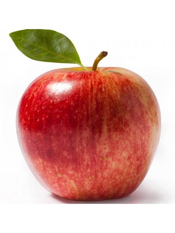 Novo eJuice Apple E-Liquid