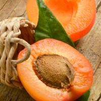 Novo eJuice Apricot E-Liquid