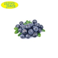 Novo eJuice Blueberry E-Liquid